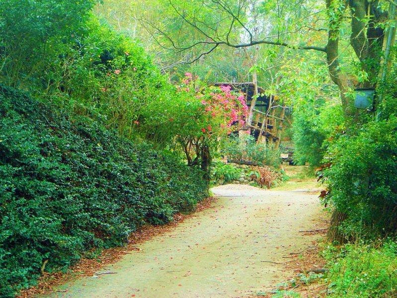 飛鳳林子 Feifong Forest, holiday rental in Taiwan