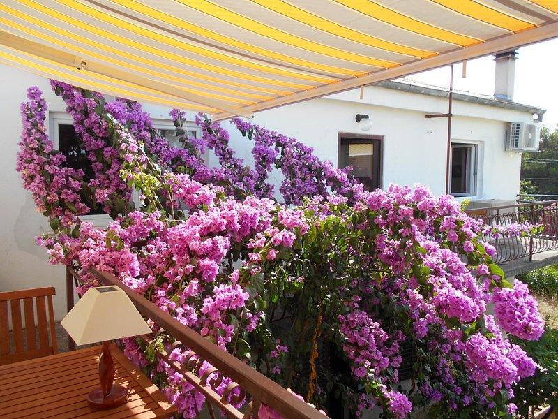 Maison fleurie, location de vacances à Pakostane