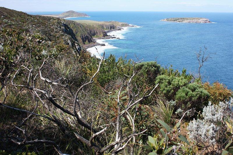 Vista desde los acantilados Waitpinga a Kings Beach Retiros