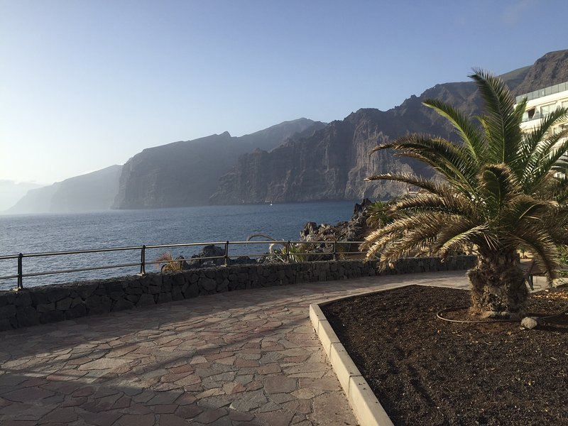 Overlooking the cliffs of Los Gigantes (not from the apartment)