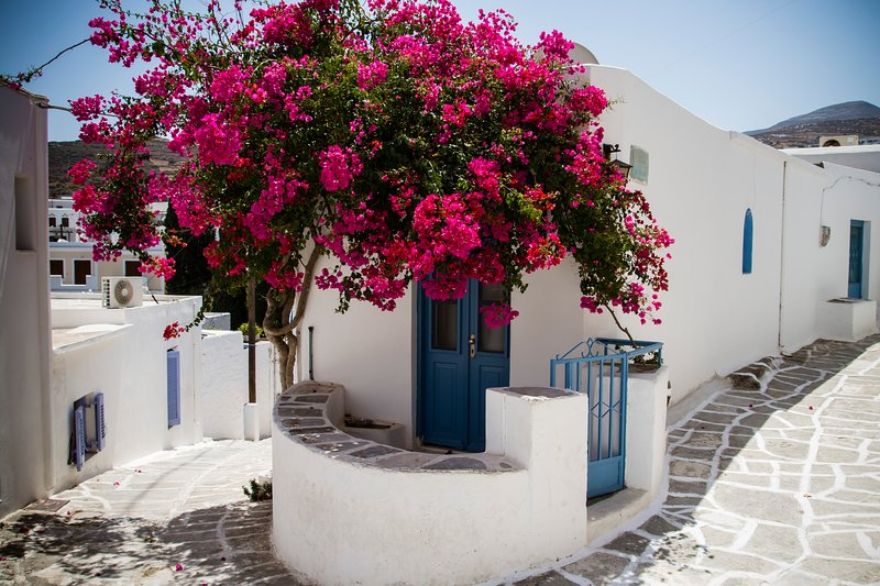 Beautiful Traditional house in Paros, vacation rental in Lefkes