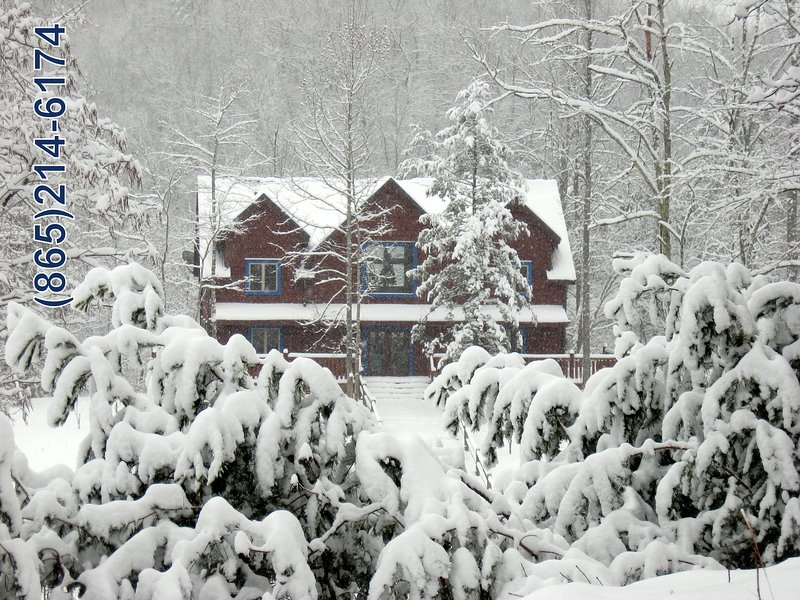 Snowy Christmas day at Blue Mountain Lodge