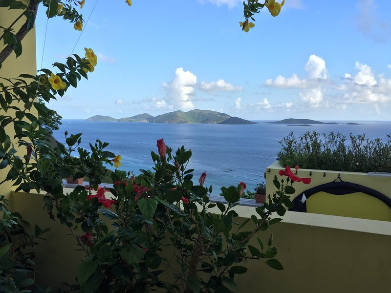 Flowering plants adorn the property contrasting with the bright blue sky and sea. Amazing views.