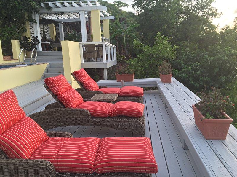 Thick pile Sunbrella Cushions on Bridgeman of London Loungers to soak up or watch the sun set.