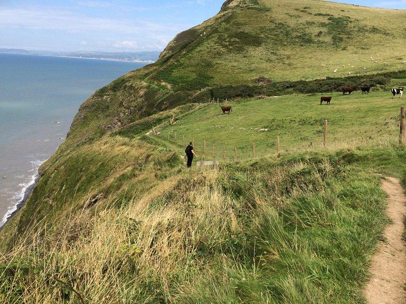 Vista dalla strada costiera tra Aberystwyth e Borth