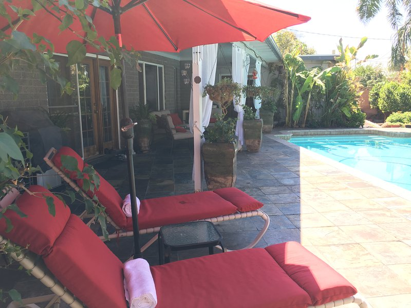 Tropical backyard with large covered patio, beautiful pool and fruit trees