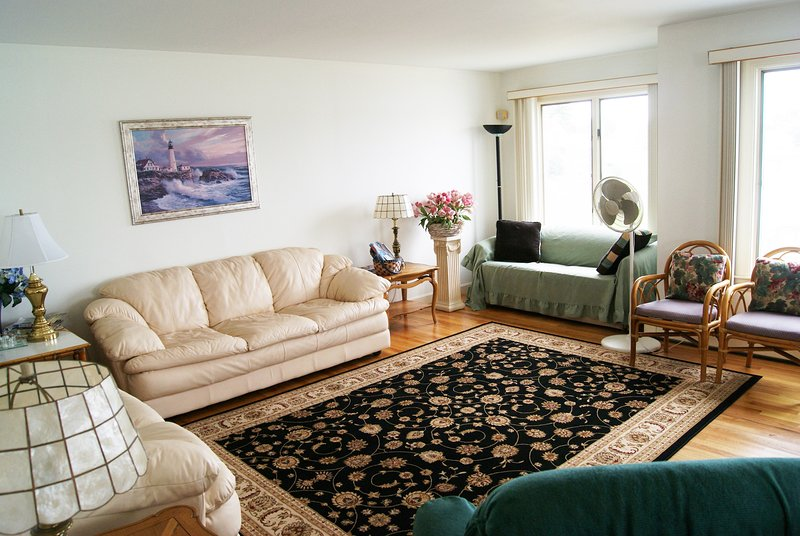 Living room with leather couch/loveseat, sofa bed in alcove, new rug, two Lazy Boy recliners.