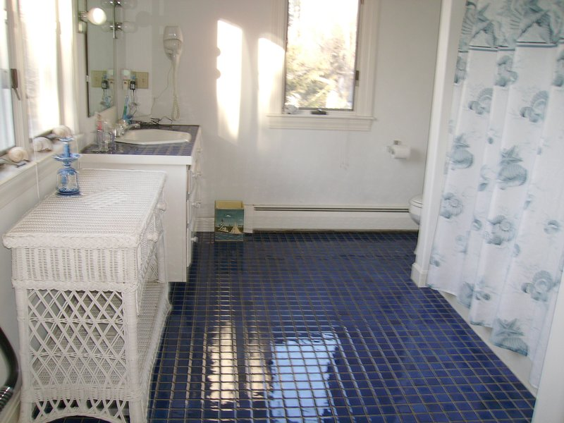 Full bath with tub/shower. Full size washer and dryer.  Iron/board and bathroom essentials provided.