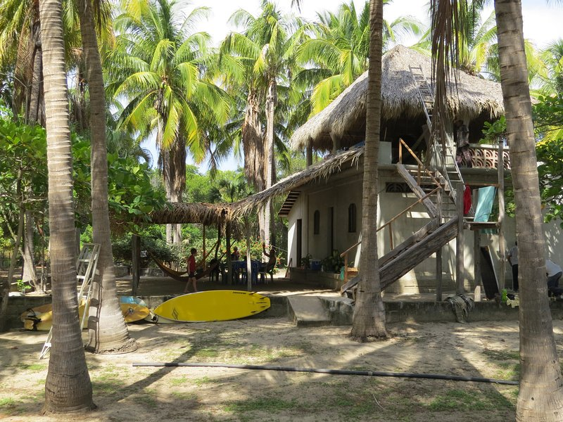 The House - Casa de Coco's, is on a large block and surrounded by over 200 coconut palms.
