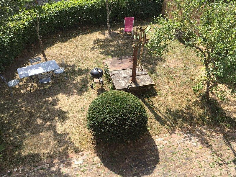 garden viewed from the floor