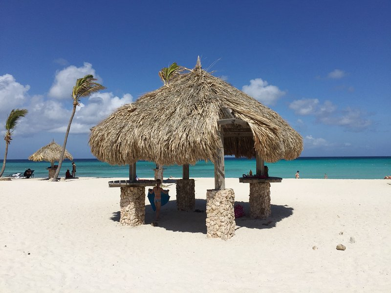 Arashi beach, just 5 minutes driving from Villa Tibushi Aruba