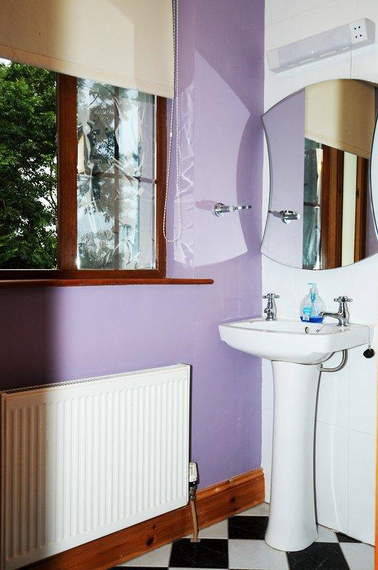 Μπάνιο με φυσικό light.monochromatic διακόσμηση