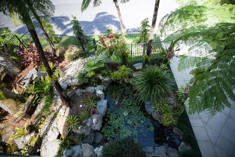 View of pond from Upstairs balcony. Lovely tropical setting, especially at night with garden lights.