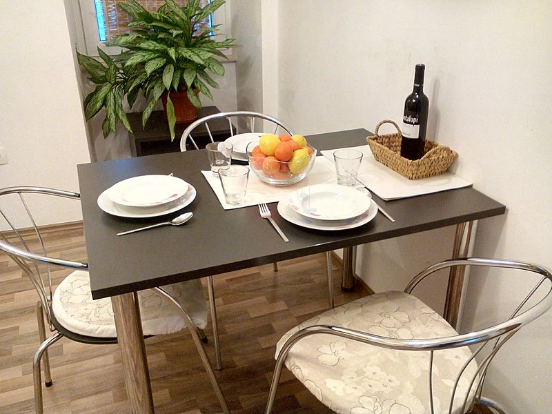 Apartment in City Center - Rijeka, holiday rental in Cavle