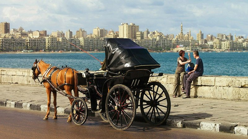 The Horsecarriage
