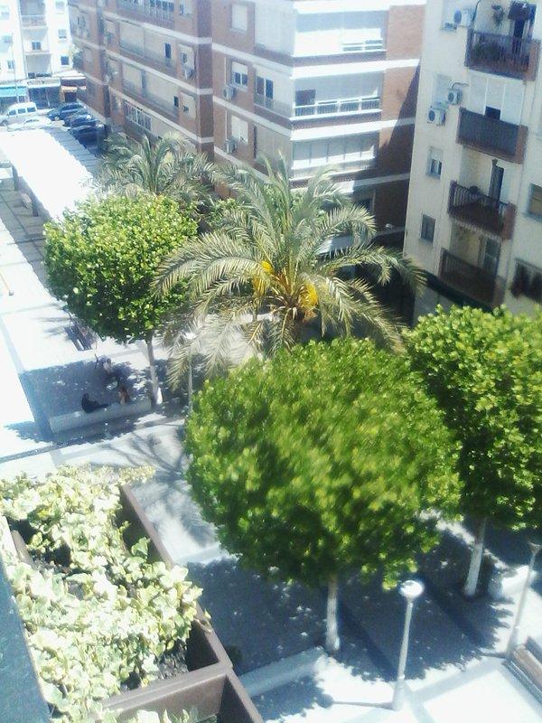 Vista desde terracita a calle peatonal con todo tipo de comercios y servicios.