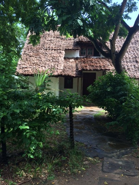 Juu Chini cottage, holiday rental in Diani Beach