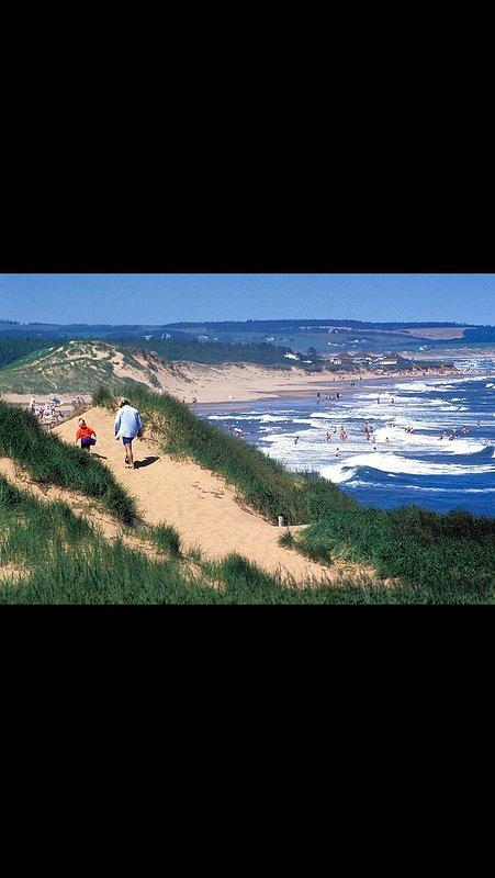 Cavendish playa principal