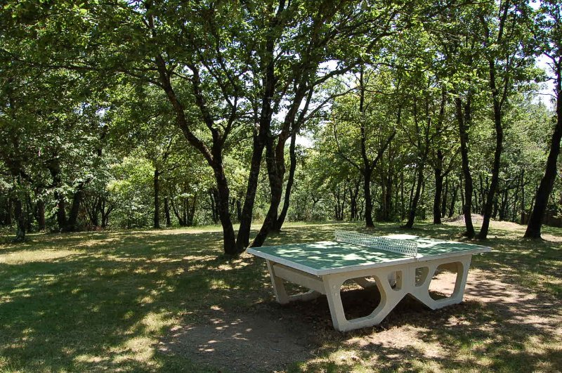 Grand Parc ombragé