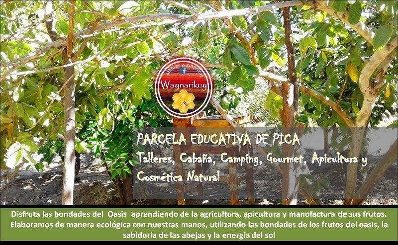 Agrocamping y cabaña, location de vacances à Pica