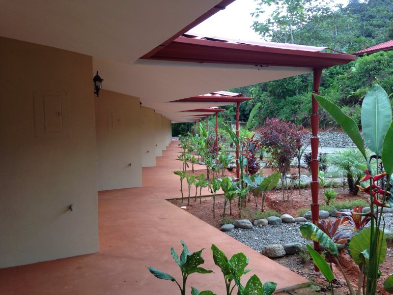 jardines tropicales, árboles frutales, animales exóticos