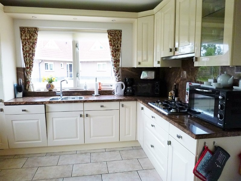 Spacious and luxury modern kitchen with all possible appilances, including dish washer
