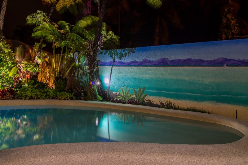 Tropical gardens by night.