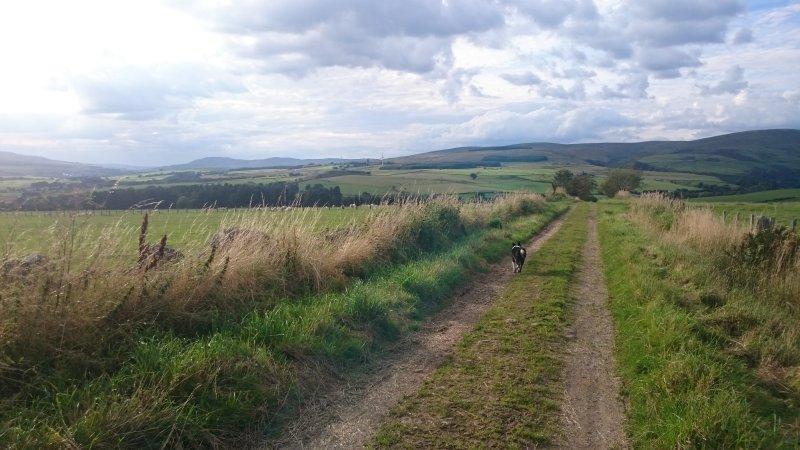 Caminhadas pelo campo com uma vista deslumbrante a poucos minutos do Viewforth