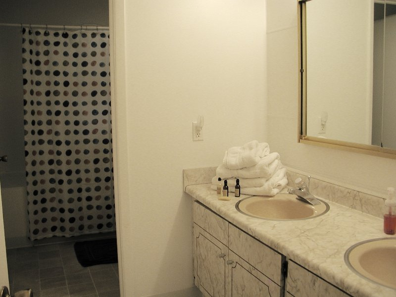 Hall Bathroom with tub