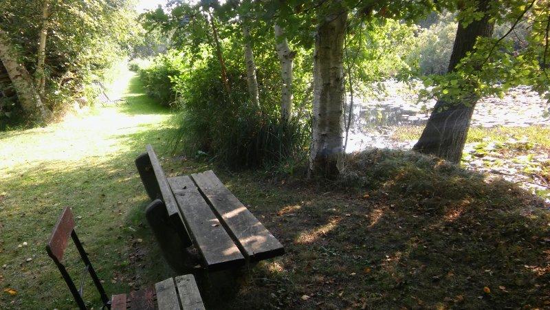 800 m trilhas para caminhadas no parque e floresta privada com bancos.