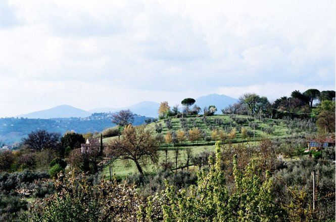 Our 5 acre hill: house is under far umbrella pine. Wonderful walking in the near Monti Sabini hills