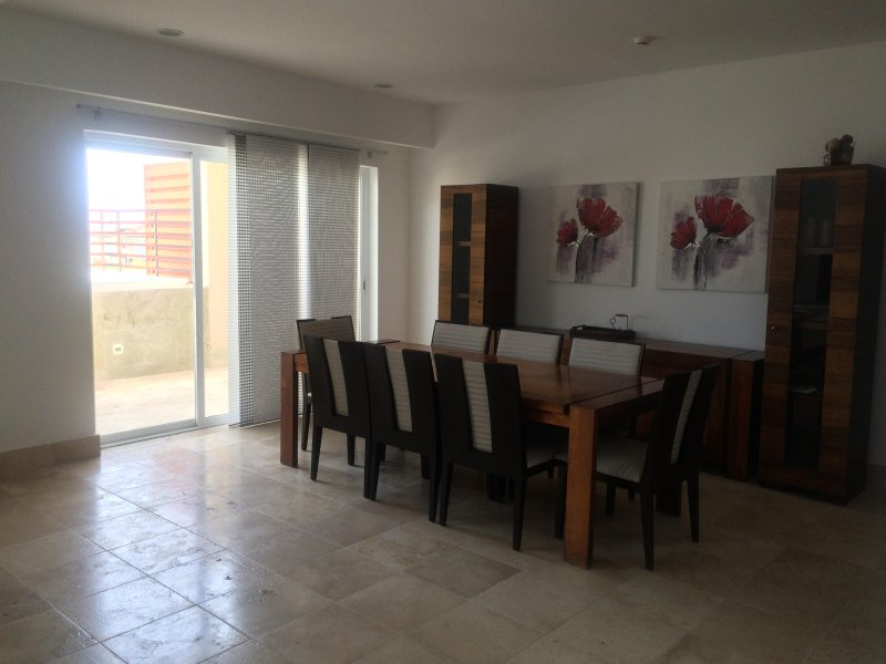 Gorgeous Pent house in front of the beach & swimming pool with in house Jacuzzi, location de vacances à Punta Cana