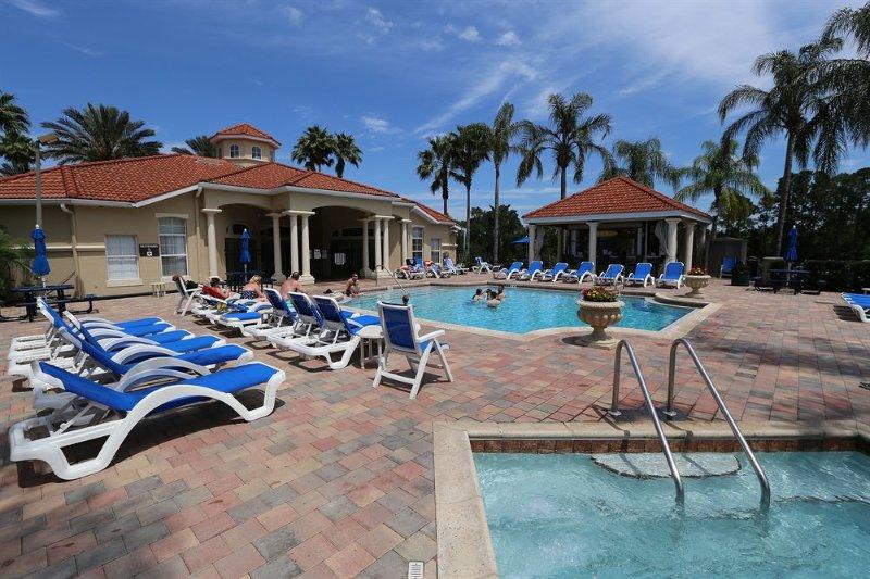 Palm Tree,Tree,Pool,Water,Roof