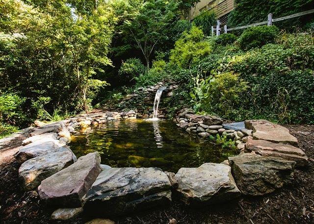 Pond no quintal