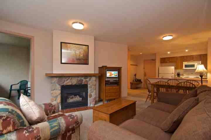 Comfortable living room , gas fireplace and sofa bed