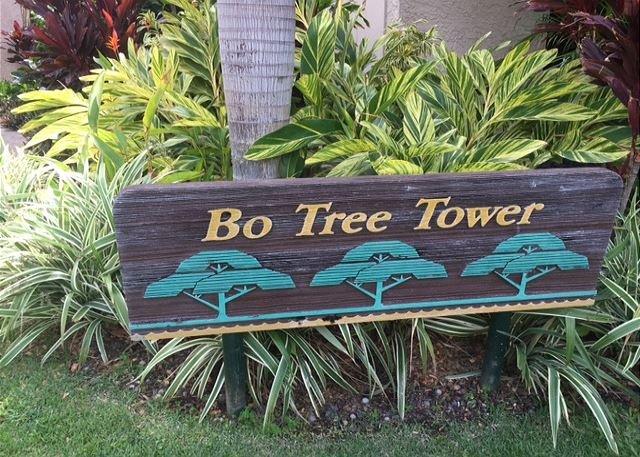 La tour est située à Waikoloa Shores.