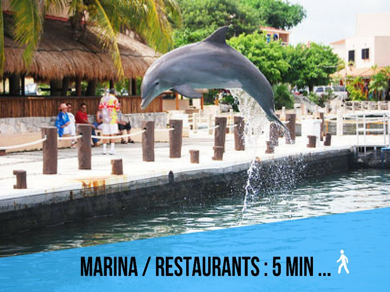 Riviera Maya Haciendas, Quinta Maya - The restaurants, Bar, Marina: 5min