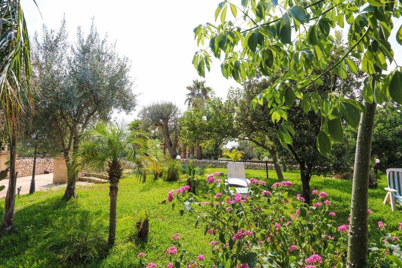 ARIA DI SICILIA: agrumi, fichi d'india, carrubi, aluguéis de temporada em Calabernardo