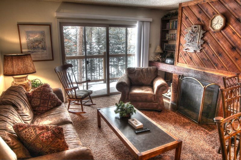 Walk to Main St. or Hop on the Free Shuttle Outside to the Slopes-Hot Tub Access, vacation rental in Breckenridge