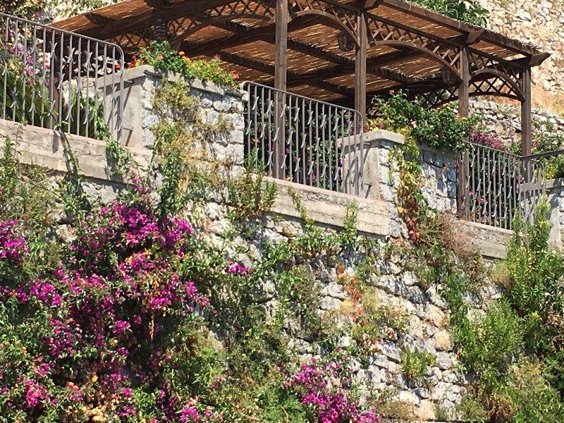 En levant les yeux au gazebo. Le bougainvillier accrocher au vieux mur de pierre dans le jardin.
