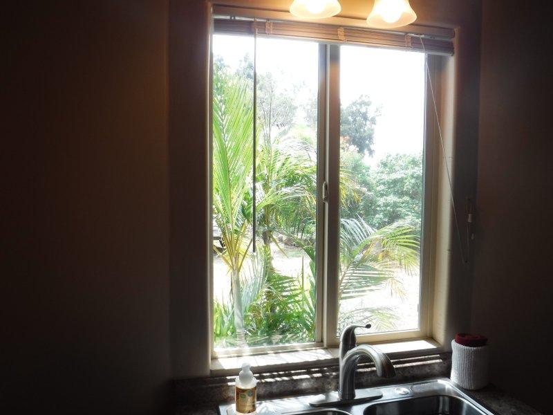 Vista dalla finestra Kitchen Sink