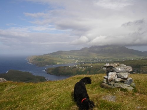 View of Slieve League from the top of Croagh Muckros (the mountain behind property)