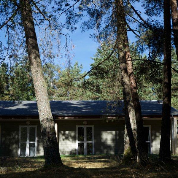 Casas de campo en el centro del Ecopark