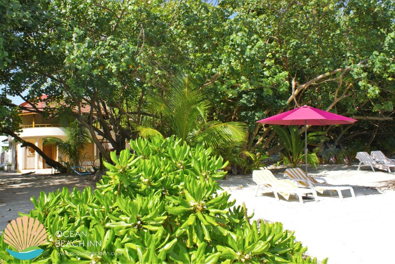 Ocean Beach Inn - Your home away beach home, holiday rental in Himandhoo Island