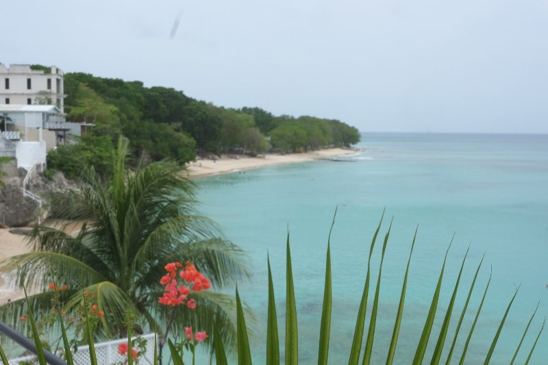 Batts beach from Ocean Blues. A few steps to our cove and into the ocean.