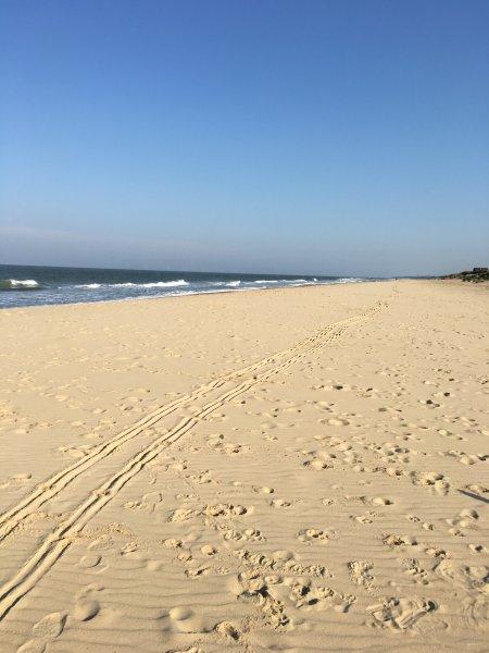 Beautiful Winterton Beach