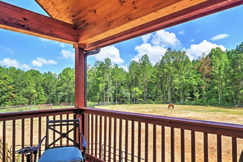 Admire the amazing views of the horses surrounded by the tall pine trees right from the back deck.