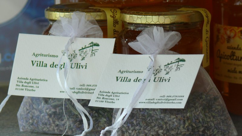 agriturismo villa degli ulivi, vacation rental in San Martino al Cimino