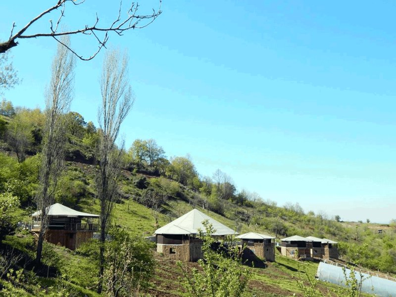 Tree of Life Eco camp, holiday rental in Izmit