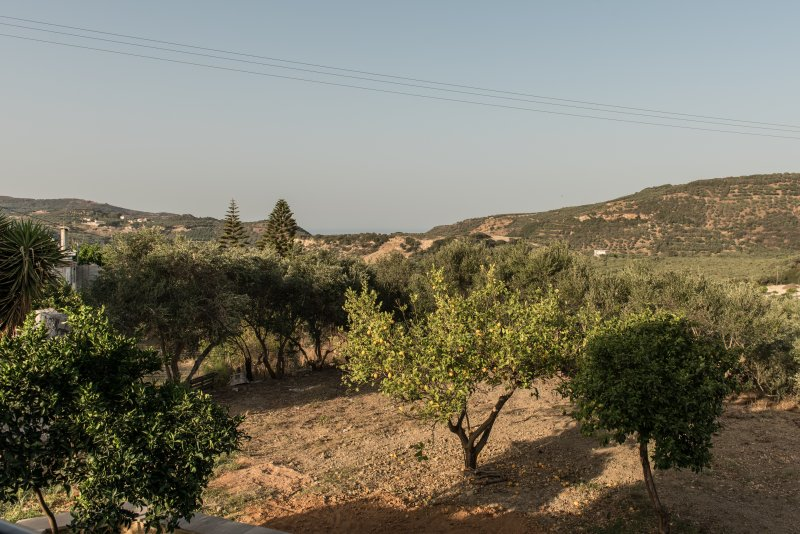 Country house in the hills of Crete, vacation rental in Platanias